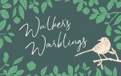 Brooklands Walkers Warblings – 22 January 2020