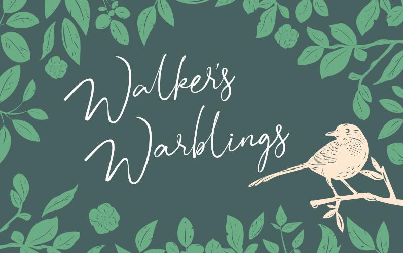 Brooklands Walkers Warblings – 22 January 2020
